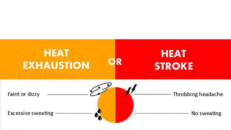 Birthday Calendar For Classroom : Heat exhaustion v stroke bear essential news