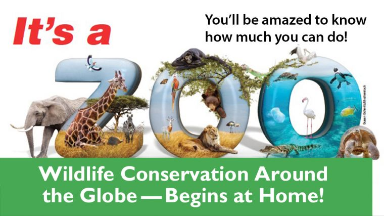 It's a Zoo! Wildlife Conservation Around the Globe—Begins at Home!