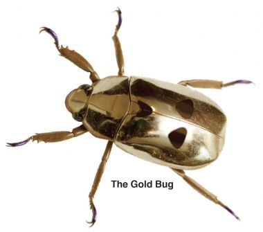 Gold bug sculpture