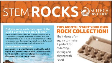 Stem Rocks header. Start your Rock Collection in an egg carton.